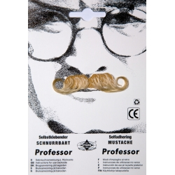Moustache professeur blonde