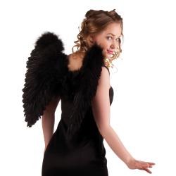 ailes d' ange noire