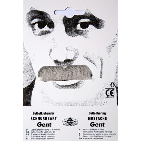 Moustache gent gris