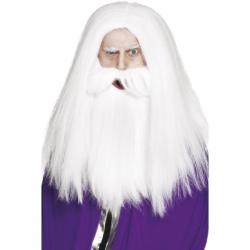 Perruque magicien et barbe