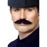 Moustache anglaise