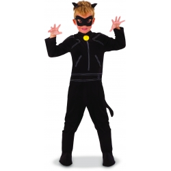 Chat noir miraculous