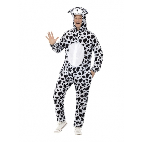 Dalmatien adulte