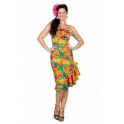 Déguisement hawai femme multi